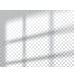 shadows overlay effects mock up window frame vector image