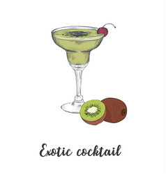 skech cocktail kiwi sketch cocktails vector image