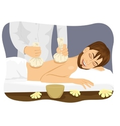 Thai herbal poultice massage vector