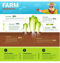 Farming infographics eco friendly organic natural vector