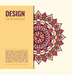card color mandala on light background elegant vector image