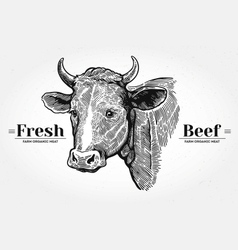 Hand drawn cow head vector