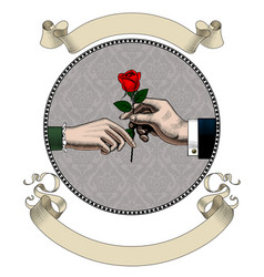 hand of man give a red rose to woman and old vector image