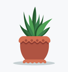 House plant tropical ananas in clay pot for decor vector