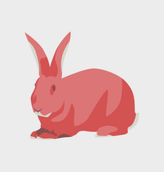In flat style rabbit vector