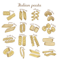 Set of colored different pasta shapes vector