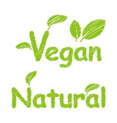 Vegan and Natural Green Texts vector image
