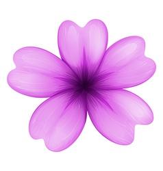 A lavender flower vector