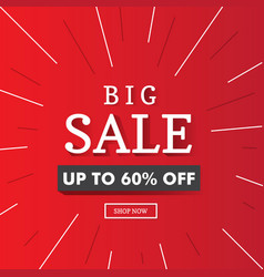 big sale banner background red vector image