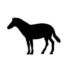 horse silhouette extinct mammalian animal vector image