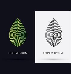 Luxury leaf vector