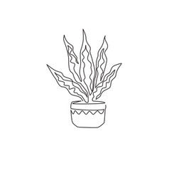 One continuous line drawing potted snake plant vector