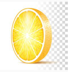 orange slice isolated vector image