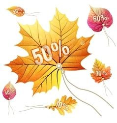 Sale tags leaves shape eps 10 vector
