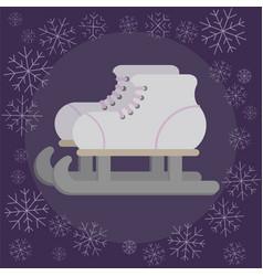 skates flat vector image
