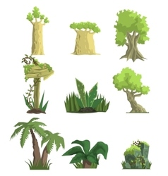Tropical Forest Landscape Elements vector image