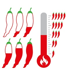 Level of Hot and spicy Chili Pepper vector image