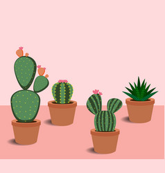 cactus and succulents with flowers vector image