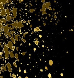 Gold paint splash splatter and blob on black vector
