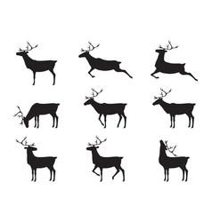 graphic deers vector image