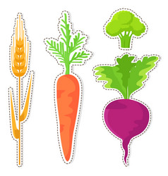 ripe cereal and vegetables stickers set vector image