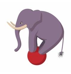 Elephant balancing on a ball cartoon vector image