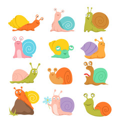 cartoon snail cute slug mollusk with shell and vector image