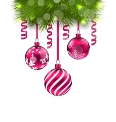 Christmas Fir Branches and Glass Balls vector image