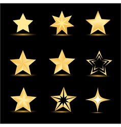 Different stars vector