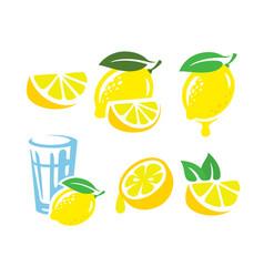 fresh lemon fruits vector image