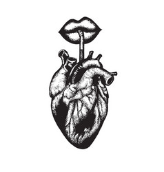 Hand drawn of human heart with lips and straw vector