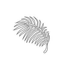 one single line drawing tropical coconut leaf vector image
