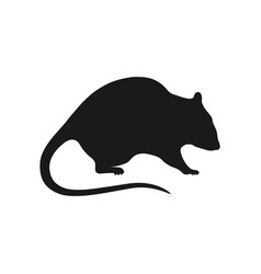 Rat sign vector