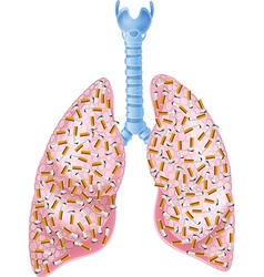 Smokers Lungs vector