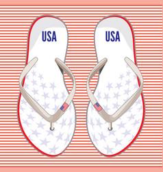 usa flip flops vector image
