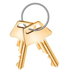Golden keys vector image vector image