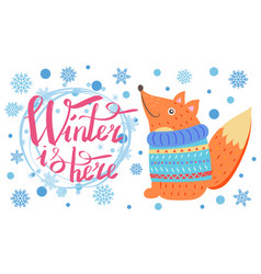 winter is here poster with fox vector image
