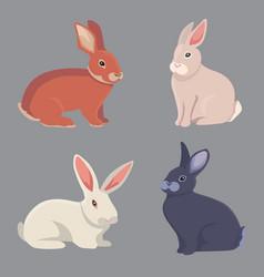 Cartoon rabbits different vector