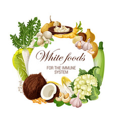 Color diet white food nutrition veggies and nuts vector