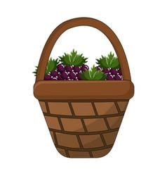 Grapes inside basket design vector