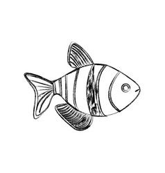 Monochrome sketch with striped fish vector