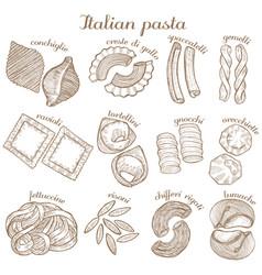 Set different pasta shape vector