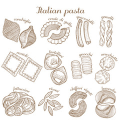 Set of different pasta shape vector