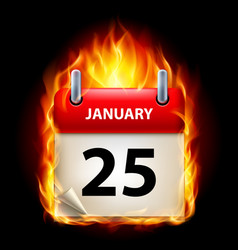 Twenty-fifth january in calendar burning icon on vector
