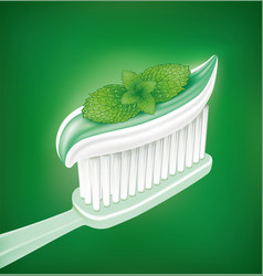 whitening toothpaste with mint on toothbrush vector image