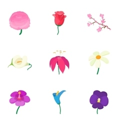 Kinds of flowers icons set cartoon style vector image vector image
