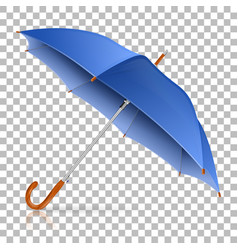 high detailed umbrella vector image vector image