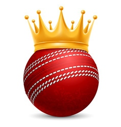 Cricket ball in crown vector