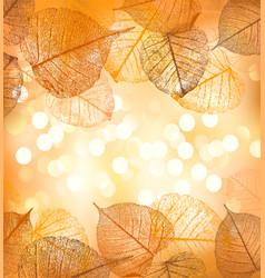 Festive background autumn leaves vector