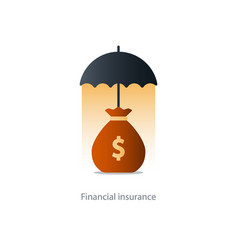 financial security concept money bag and umbrella vector image